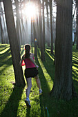 THE PRESIDIO, SAN FRANCISCO, CALIFORNIA - JANUARY 20, 2005: A runner runs through a pine forest into the setting sun in San Francisco's former military base known as The Presidio. Now a national park, The Presidio is a popular destination for urban runner
