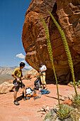 Josh Gross and Tina Sommer prepare to climb at the Stratocaster Wall in the Calico Hills of Red Rocks Canyon, Nevada.