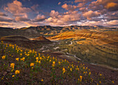 Beautiful golden wildflowers compliment this sunset scene depicting Oregon's colorful Painted Hills.  Rare lighting illuminates the center of the Painted Hills beneath vibrant skies.