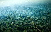 An aerial image reveals a dirt road winding through the lush Kenyan foothills outside of Nairobi.