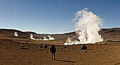 The Sol de Manana geysers, a geothermal field at a height of 5000 metres, Bolivia, South America