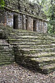 Yaxchilan Archaeological Zone, Chiapas, Mexico, North America