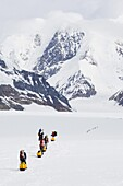 Climbing expedition leaving base camp on Mount McKinley, 6194m, Denali National Park, Alaska, United States of America, North America