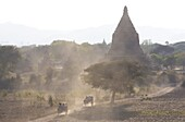 View over the temples of Bagan swathed in evening sunlight with bullock carts travelling along a dusty road, from Shwesandaw Paya, Bagan, Myanmar (Burma), Southeast Asia