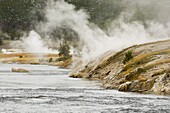 Firehole River near Lower Geyser Basin, Yellowstone National Park, UNESCO World Heritage Site, Wyoming, United States of America, North America