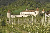 Fortified house surrounded by apple orchards, Coldrano, Venosta valley, Western Dolomites, Italy, Europe