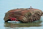 Small barge with palm fronds on Saigon river, Ho Chi Minh City (Saigon), Ho Chi Minh, Vietnam, Asia
