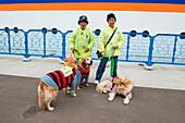 Two women and three dogs at pier, Otaru, Hokkaido, Japan, Asia