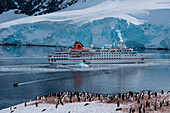 Overhead of expedition cruise ship MS Hanseatic (Hapag-Lloyd Cruises) at anchor with penguins in icy landscape, Neko Harbour, Graham Land, Antarctica