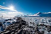 Chunks of ice line shore with dramatic mountain backdrop, Half Moon Island, South Shetland Islands, Antarctica