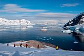 Passengers from expedition cruise ship MS Hanseatic (Hapag-Lloyd Cruises) trek through snow with view of vessel, Neko Harbour, Graham Land, Antarctica