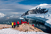 Passengers from expedition cruise ship MS Hanseatic (Hapag-Lloyd Cruises) admire view from hilltop, Neko Harbour, Graham Land, Antarctica