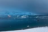 Zodiac dinghy from expedition cruise ship MS Hanseatic (Hapag-Lloyd Cruises), Neko Harbour, Graham Land, Antarctica