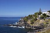 El Jupado, Playa de las Americas, Tenerife, Canary Islands, Spain, Atlantic, Europe
