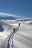 Ski touring, ski mountaineering in the Dolomites, Piz Boe, eastern Alps, Bolzano, South Tyrol, Italy, Europe