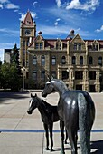 Sculpture at Calgary City Hall, Calgary, Alberta, Canada, North America