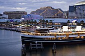 South Steyne Ferry and Harbourside in Darling Harbour, Central Business District, Sydney, New South Wales, Australia, Pacific