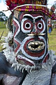 Colourfully dressed and face painted local tribes celebrating the traditional Sing Sing in the Highlands of Papua New Guinea, Pacific