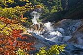 Steam fumaroles in Jigokudani geothermal area, Noboribetsu Onsen, Shikotsu-Toya National Park, Hokkaido, Japan