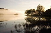 Early morning mist reflected in the still waters of Loch Achray, near Aberfoyle, Loch Lomond and the Trossachs National Park, Stirling, Scotland, United Kingdom, Europe
