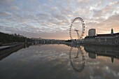 The London Eye reflected in the calm water of the River Thames in the early morning, London, England, United Kingdom, Europe