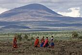Masai, Amboseli National Park, Kenya, East Africa, Africa