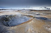Mudpots at Namaskard geothermal area (Namafjall-Hverarond), near Lake Myvatn and Reykjahlid, North Iceland, Iceland, Polar Regions