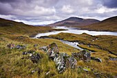 Autumn moorland and mountains beside Loch Quoich,  Highland,  Scotland,  United Kingdom,  Europe