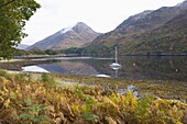 View across the tranquil waters of Loch Leve in autumn, near Fort William, Highland, Scotland, United Kingdom, Europe