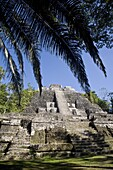 High Temple (Structure N10-43), the highest temple in the Mayan site, Lamanai, Belize, Central America