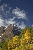 Maroon Bells with fall color, White River National Forest, Colorado, United States of America, North America