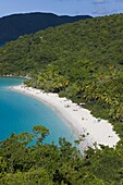 Elevated view over the world famous beach at Trunk Bay, St. John, U.S. Virgin Islands, West Indies, Caribbean, Central America