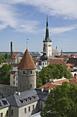 Rooftop view with Church of the Holy Ghost, Tallin, Estonia, Europe