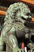 Male bronze lion, Gate of Supreme Harmony, Outer Court, Forbidden City, Beijing, China, Asia