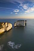 Morning sunshine lights up the white chalk cliffs at Old Harry, Jurassic Coast, UNESCO World Heritage Site, Dorset, England, United Kingdom, Europe