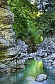 The crystal clear water of the Voidomatis River reflects the vibrant Spring greens in the Vikos Gorge, Zagoria, Epirus, Greece, Europe
