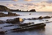 Late evening sunshine glistens on the wet rocks at Hartland Quay, North Devon, England, United Kingdom, Europe