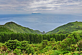 View over steep coast with subtropical vegetation and laurel wood towards sea and Island of Corvo, highlands, Island of Flores, Azores, Portugal, Europe, Atlantic Ocean