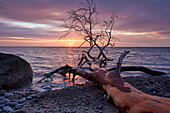 Sunrise along the Baltic Sea Coast, Chalk cliffs at Jasmund National Park, Ruegen Island, Mecklenburg Western Pomerania, Germany