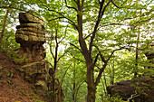Rocks of Pruemerburg, nature park Suedeifel, Eifel, Rhineland-Palatinate, Germany