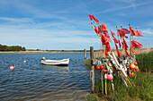 Darsser Ort, Darss, National Park Vorpommersche Boddenlandschaft, Baltic Sea, Mecklenburg-West Pomerania, Germany