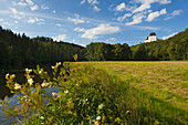 Burgk castle, nature park Thueringer Schiefergebirge / Obere Saale,  Thuringia, Germany