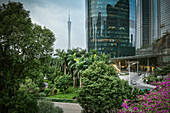 Guangzhou's iconic TV Tower with lush gardens and IFC (International Finance Center) tower, Guangdong province, Pearl River Delta, China
