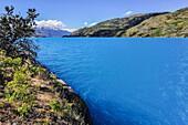 'Lake Lago General Carrera near Puerto Guadal, Carretera Austral, Región Aysén, Patagonia, Andes, Chile, South America;'
