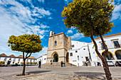 Orange trees in front of Se Cathedral, Largo da Se, Faro, Algarve, Portugal