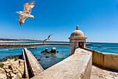 Castle Forte da Bandeira, Lagos, Algarve, Portugal