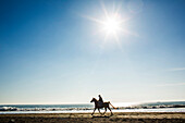 Horseback rider on beach