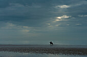 Person riding horse along Camber Sands on cloudy day with ray of sunshine, East Sussex, England
