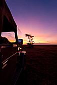 Silhouette of guide in 4x4 in front of Mt Kenya at dawn, Ol Pejeta Conservancy, Kenya