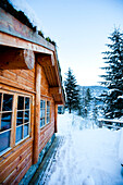 Winter alpine scenery with mountains, snow and a pine forest with Brekke rental cabins, Ortnevik, Sognefjord, Norway
